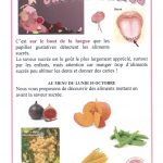 gout_saveur_sucree_2